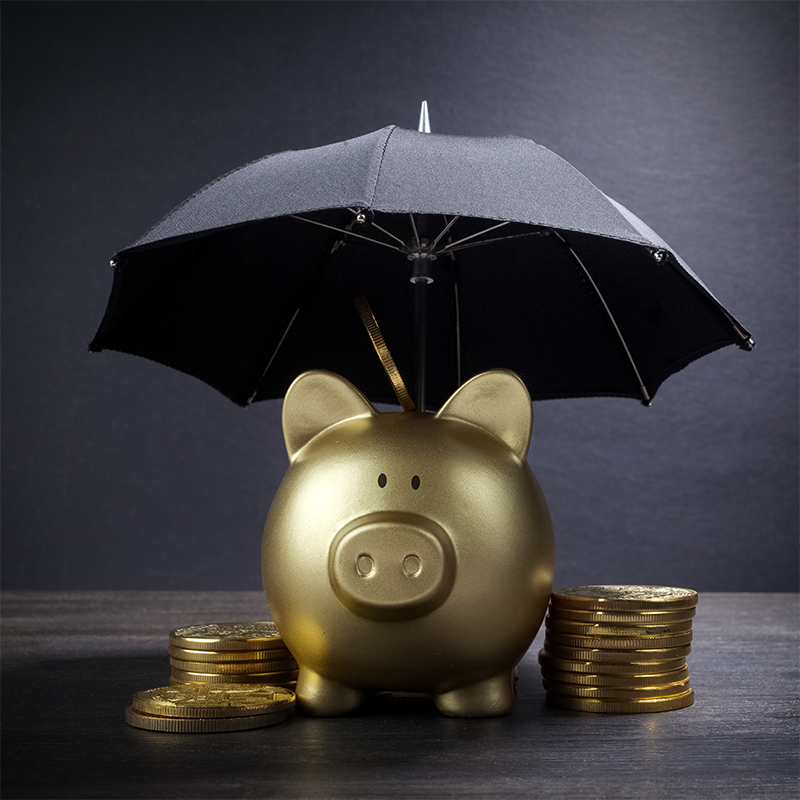 Gold pig under umbrella